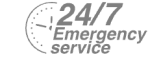 24/7 Emergency Service Pest Control in Orsett, Chafford Hundred, RM16. Call Now! 020 8166 9746